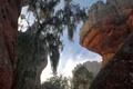 Картинка деревья, скалы, Бразилия, штат Парана, Понта-Гросса