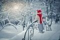 Картинка природа, снег, ребенок, зима