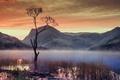 Картинка небо, облака, горы, озеро, дерево