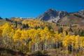 Картинка осень, лес, небо, деревья, горы, осина