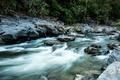 Картинка поток, камни, река, деревья, природа