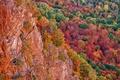 Картинка осень, лес, деревья, скалы, Мичиган, США, багрянец