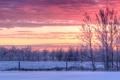Картинка зима, облака, снег, деревья, закат, забор, сельская местность