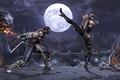 Картинка Mortal Kombat, Scorpion, Sonya Blade, Komplete Edition
