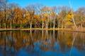 Картинка осень, деревья, озеро, пруд, парк, отражение