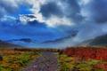 Картинка дорога, осень, трава, облака, горы, кусты