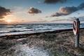 Картинка море, берег, круг