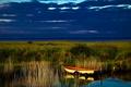 Картинка трава, река, камыши, берег, лодка, вечер