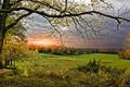 Картинка природа, осень, закат