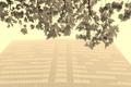 Картинка осень, город, туман