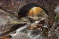 Картинка осень, лес, мост, природа, река