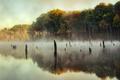 Картинка небо, деревья, туман, озеро, отражение, зеркало