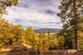 Картинка осень, деревья, горы, озеро, Калифорния, США, Big Bear Lake