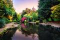Картинка осень, небо, деревья, скамейка, парк, отражение, Англия
