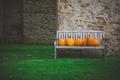 Картинка трава, скамейка, двор, тыквы, оранжевые, скамья