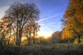 Картинка осень, лес, небо, облака, деревья, церковь, солнечный свет