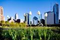 Картинка трава, здания, лето, Chicago, парк, небоскребы, Чикаго