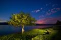 Картинка свет, горы, ночь, озеро, дерево