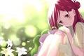 Картинка лето, цветы, аниме, арт, девочка