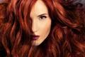 Картинка рыжеволосая, девушка, взгляд