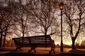 Картинка город, светильник, скамья